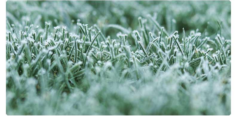 instalacion-cesped-artificial-invierno-BJ